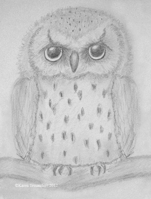 One owl_1338