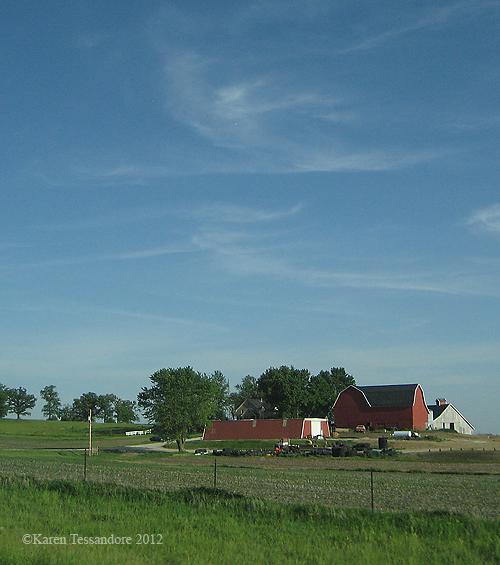 Farm_0174