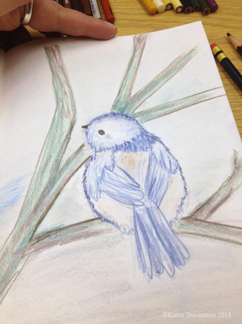 Bird_4019